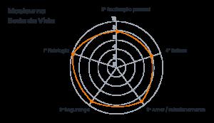 Desenho de Maslow na roda da vida